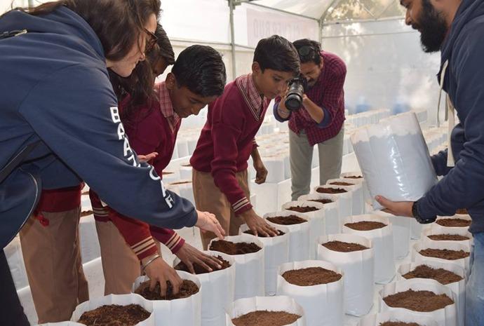 नौकरी छोड़ बिना मिट्टी के फसल उगाने का हुनर सीखा रही है कनिका
